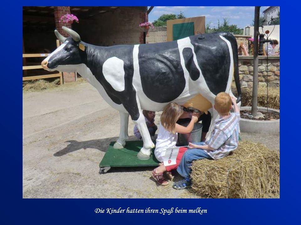 Bei Kistner's im Hof dreht sich alles rund um die Milch