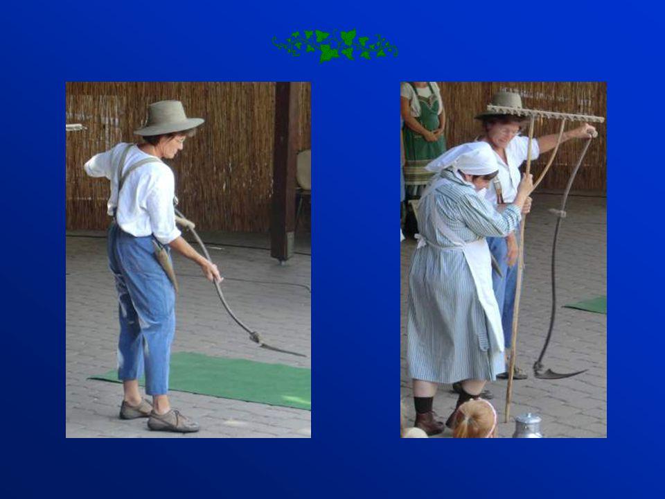 Frauen und Männer bei der Feldarbeit. Frauen beim Wäsche waschen und bleichen