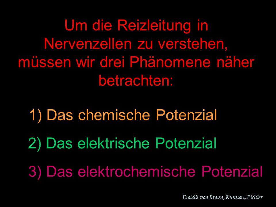 Erstellt von Braun, Kunnert, Pichler Um die Reizleitung in Nervenzellen zu verstehen, müssen wir drei Phänomene näher betrachten: 1) Das chemische Potenzial 2) Das elektrische Potenzial 3) Das elektrochemische Potenzial