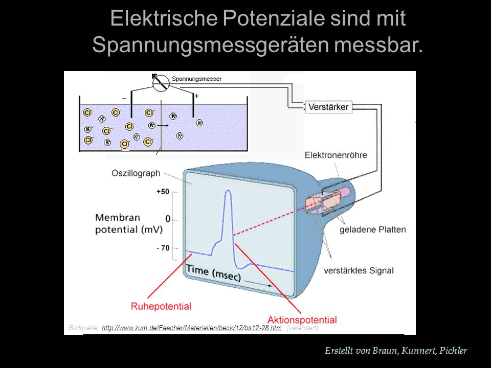 Erstellt von Braun, Kunnert, Pichler Elektrische Potenziale sind mit Spannungsmessgeräten messbar.