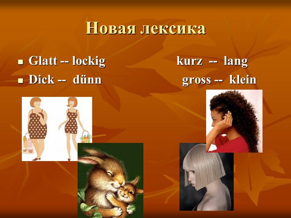 Новая лексика Glatt -- lockig kurz -- lang Glatt -- lockig kurz -- lang Dick -- dünn gross -- klein Dick -- dünn gross -- klein