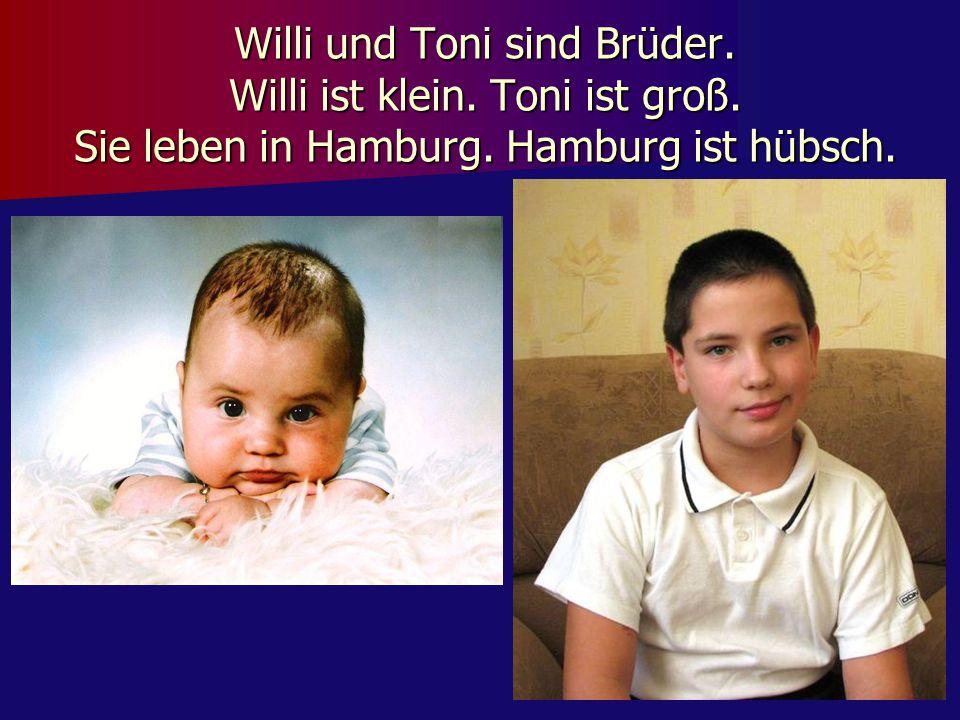 Willi und Toni sind Brüder. Willi ist klein. Toni ist groß. Sie leben in Hamburg. Hamburg ist hübsch.