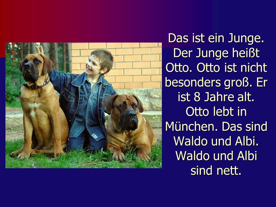 Das ist ein Junge. Der Junge heißt Otto. Otto ist nicht besonders groß. Er ist 8 Jahre alt. Otto lebt in München. Das sind Waldo und Albi. Waldo und A