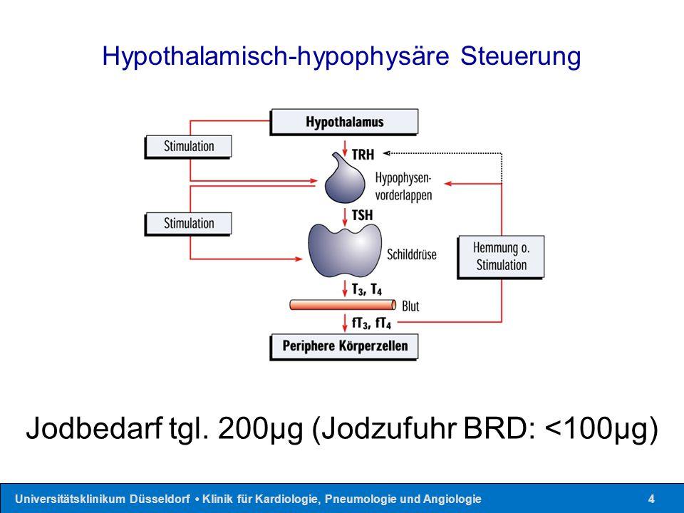 Universitätsklinikum Düsseldorf Klinik für Kardiologie, Pneumologie und Angiologie4 Jodbedarf tgl. 200µg (Jodzufuhr BRD: <100µg) Hypothalamisch-hypoph