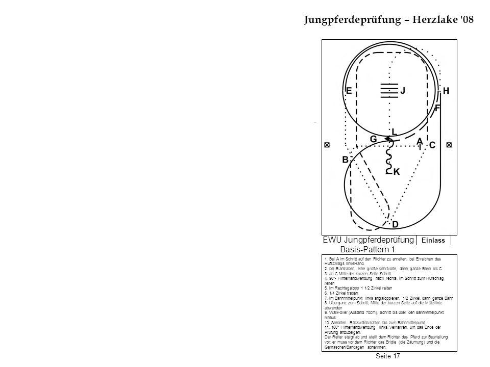 Einlass Jungpferdeprüfung – Herzlake '08 1. Bei A im Schritt auf den Richter zu anreiten, bei Erreichen des Hufschlags linkeHand. 2. bei B antraben, e