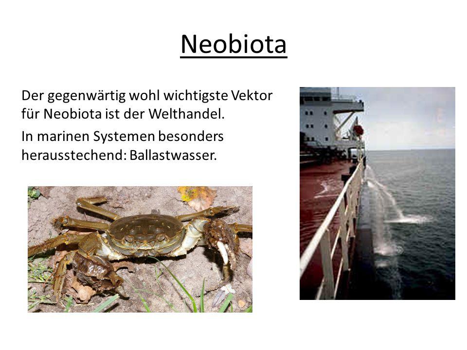 Der gegenwärtig wohl wichtigste Vektor für Neobiota ist der Welthandel. In marinen Systemen besonders herausstechend: Ballastwasser.