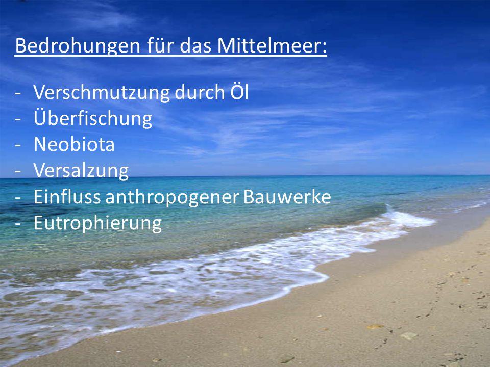 Bedrohungen für das Mittelmeer: -Verschmutzung durch Öl -Überfischung -Neobiota -Versalzung -Einfluss anthropogener Bauwerke -Eutrophierung