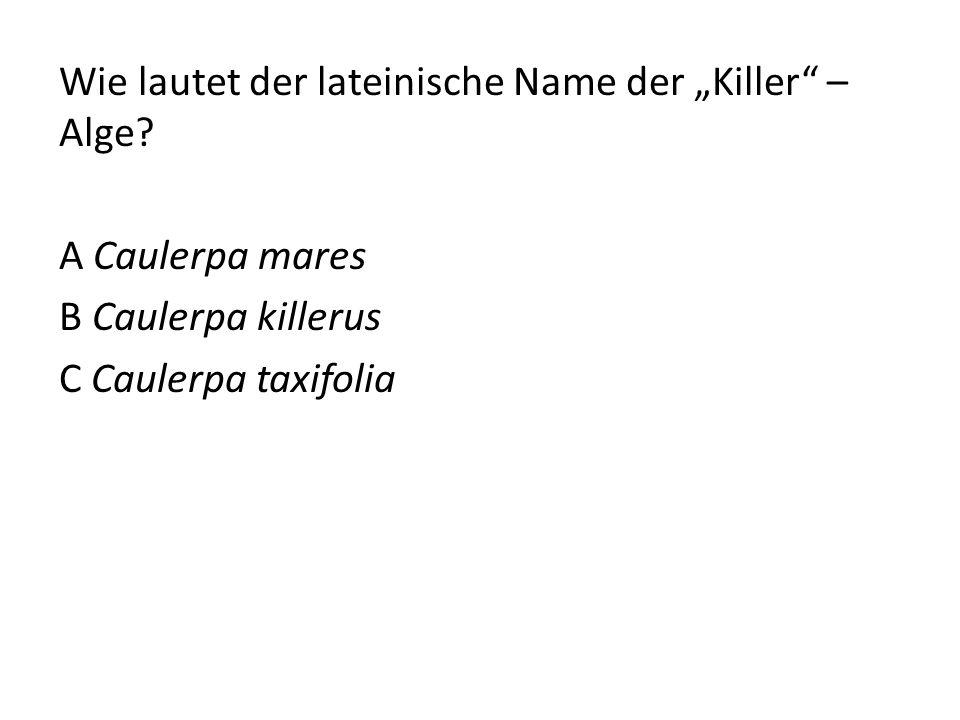 "Wie lautet der lateinische Name der ""Killer"" – Alge? A Caulerpa mares B Caulerpa killerus C Caulerpa taxifolia"