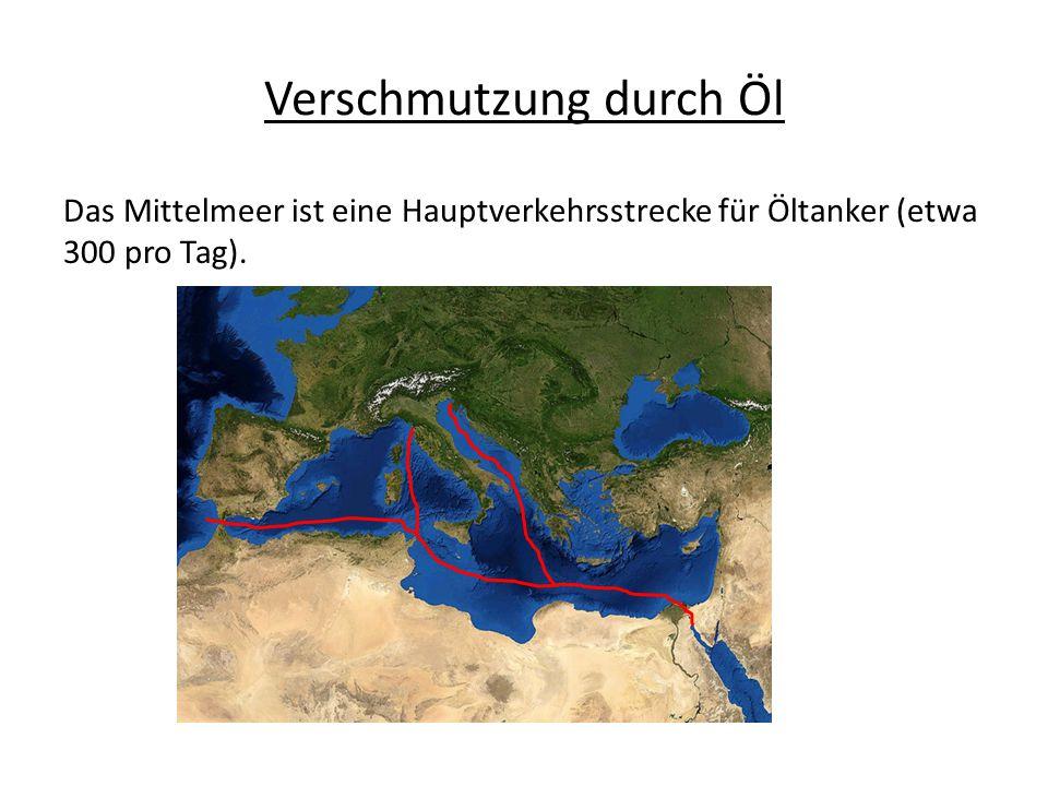 Verschmutzung durch Öl Das Mittelmeer ist eine Hauptverkehrsstrecke für Öltanker (etwa 300 pro Tag).