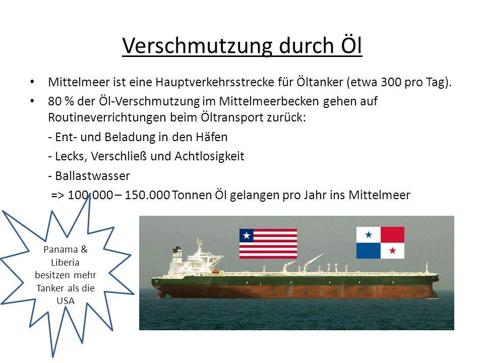 Verschmutzung durch Öl Mittelmeer ist eine Hauptverkehrsstrecke für Öltanker (etwa 300 pro Tag). 80 % der Öl-Verschmutzung im Mittelmeerbecken gehen a
