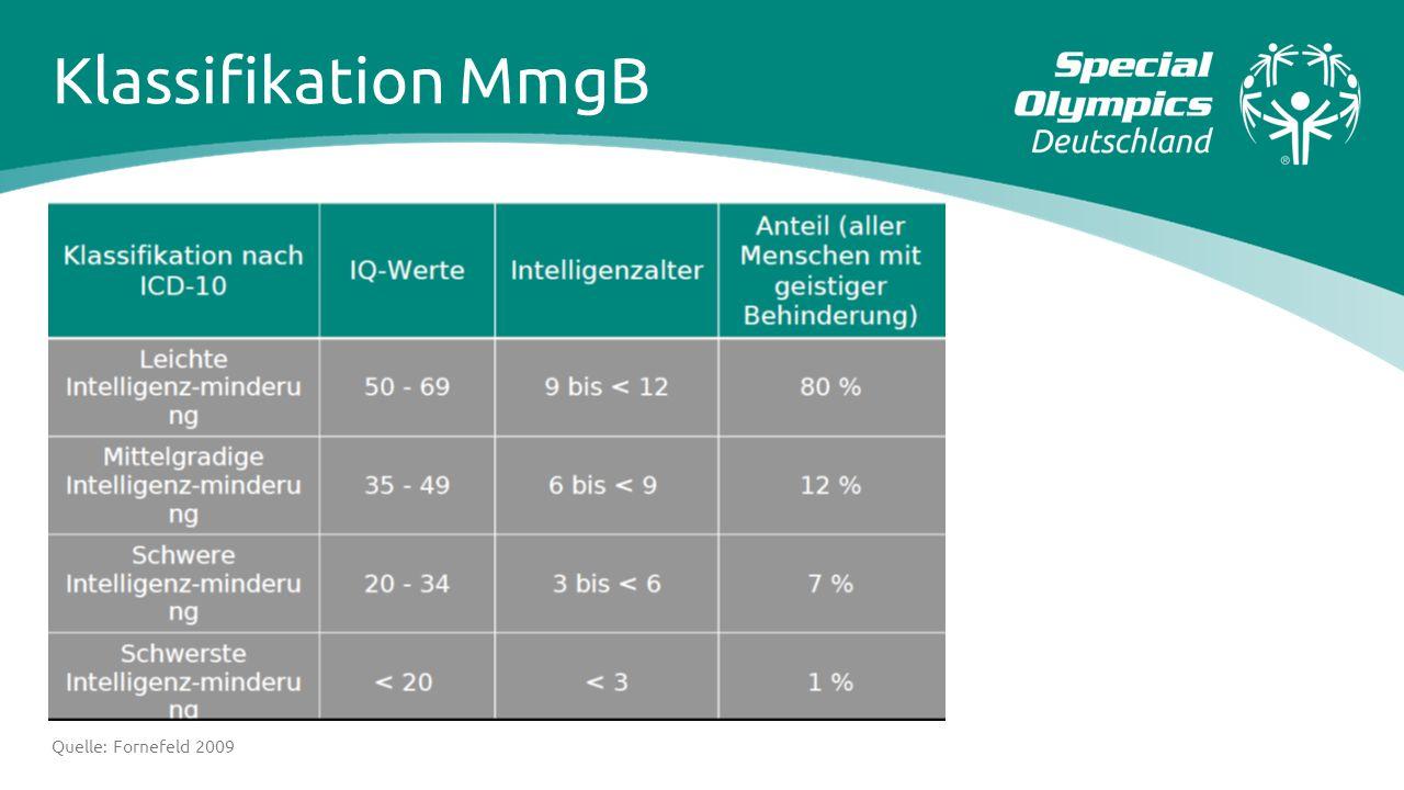 Klassifikation MmgB Quelle: Fornefeld 2009