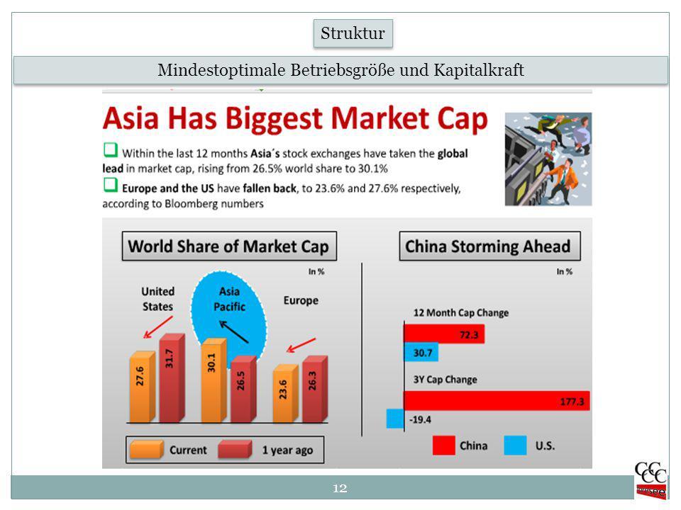 12 Mindestoptimale Betriebsgröße und Kapitalkraft Struktur