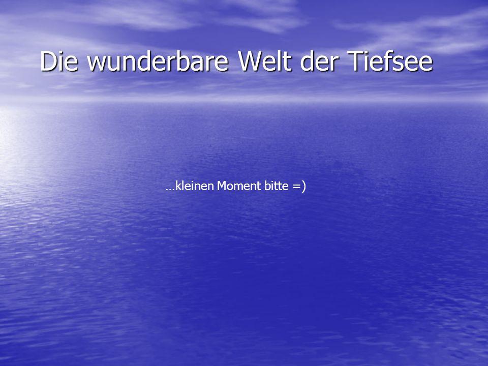 Die wunderbare Welt der Tiefsee …kleinen Moment bitte =)