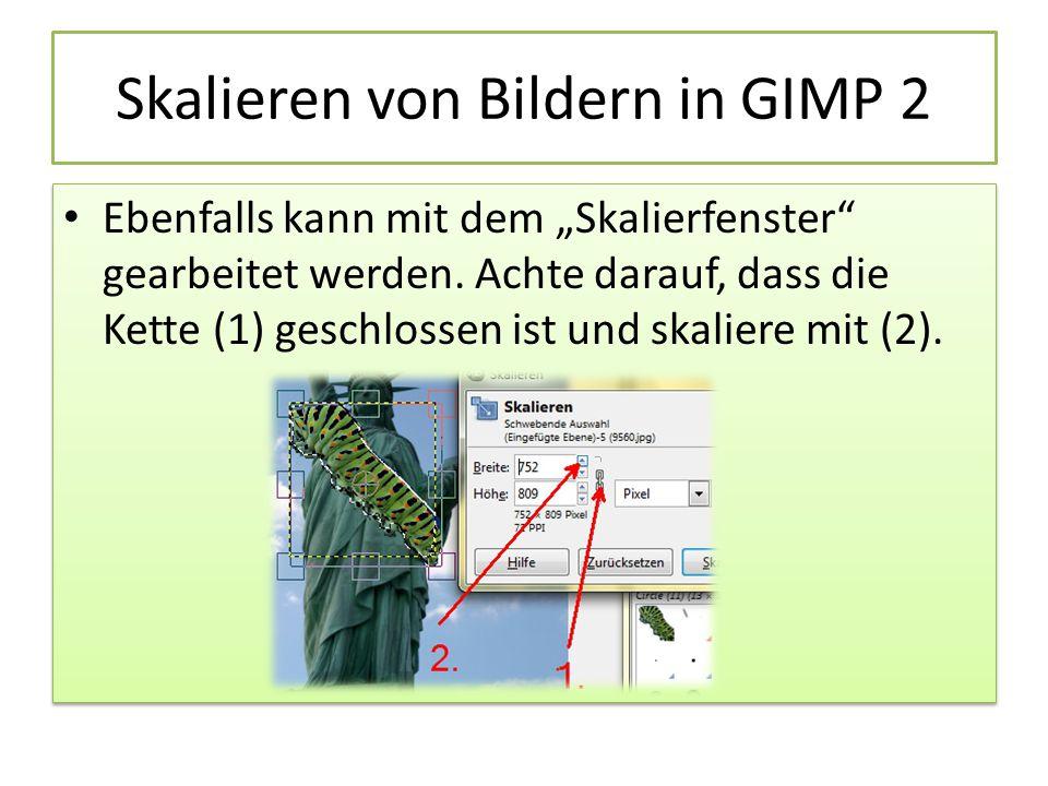 """Skalieren von Bildern in GIMP 2 Ebenfalls kann mit dem """"Skalierfenster gearbeitet werden."""