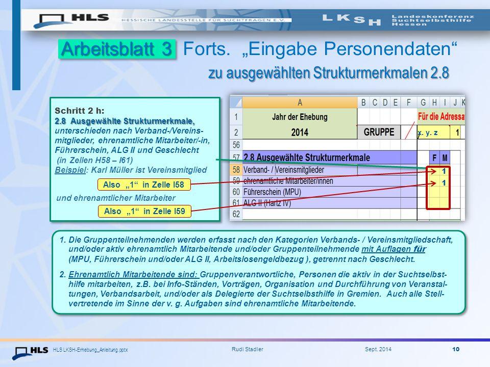 "HLS LKSH-Erhebung_Anleitung.pptx Rudi Stadler Sept. 2014 10 Arbeitsblatt 3 zu ausgewählten Strukturmerkmalen 2.8 Arbeitsblatt 3 Forts. ""Eingabe Person"