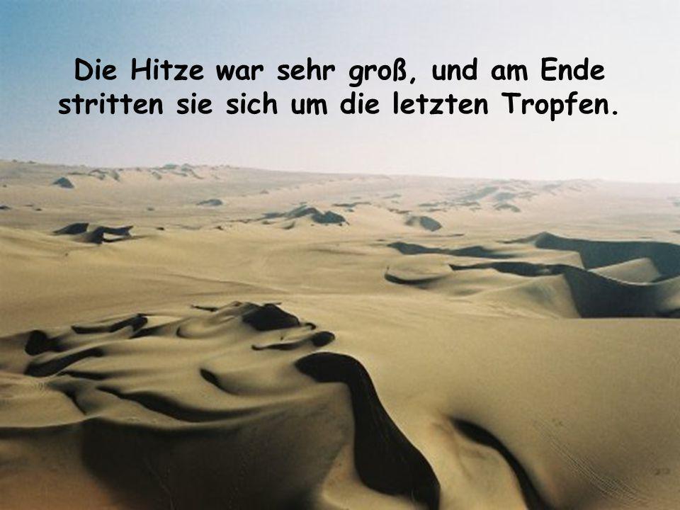 Zwei Freunde hatten sich in einer trockenen Wüste verirrt. Die Sonne brannte vom Himmel und sie hatten nur noch eine kleine Menge Wasser.