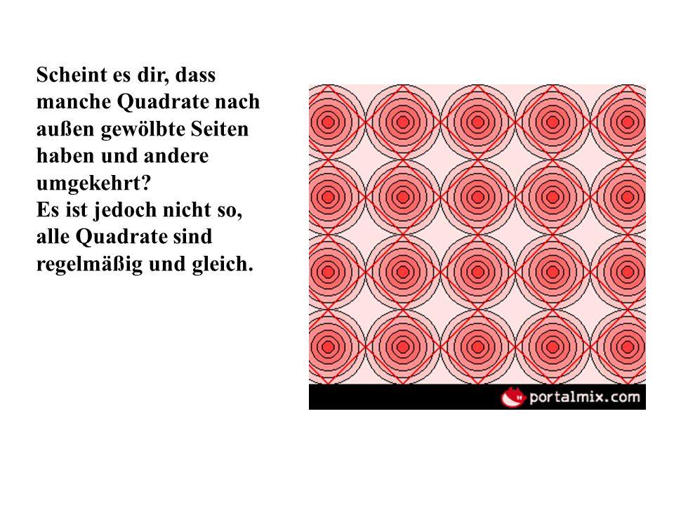 Scheint es dir, dass manche Quadrate nach außen gewölbte Seiten haben und andere umgekehrt? Es ist jedoch nicht so, alle Quadrate sind regelmäßig und
