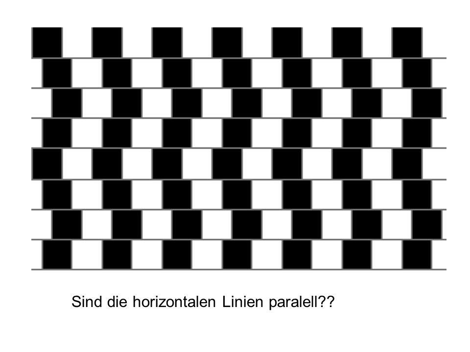Sind die horizontalen Linien paralell??