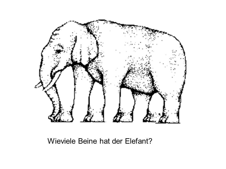 Wieviele Beine hat der Elefant?