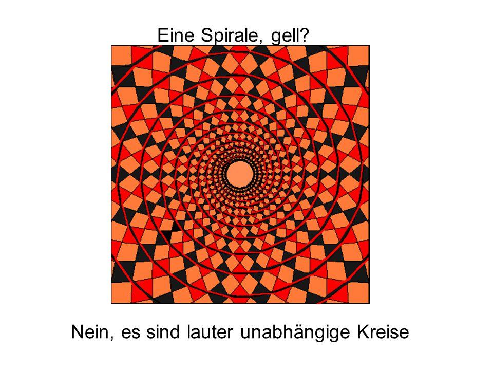 Eine Spirale, gell? Nein, es sind lauter unabhängige Kreise
