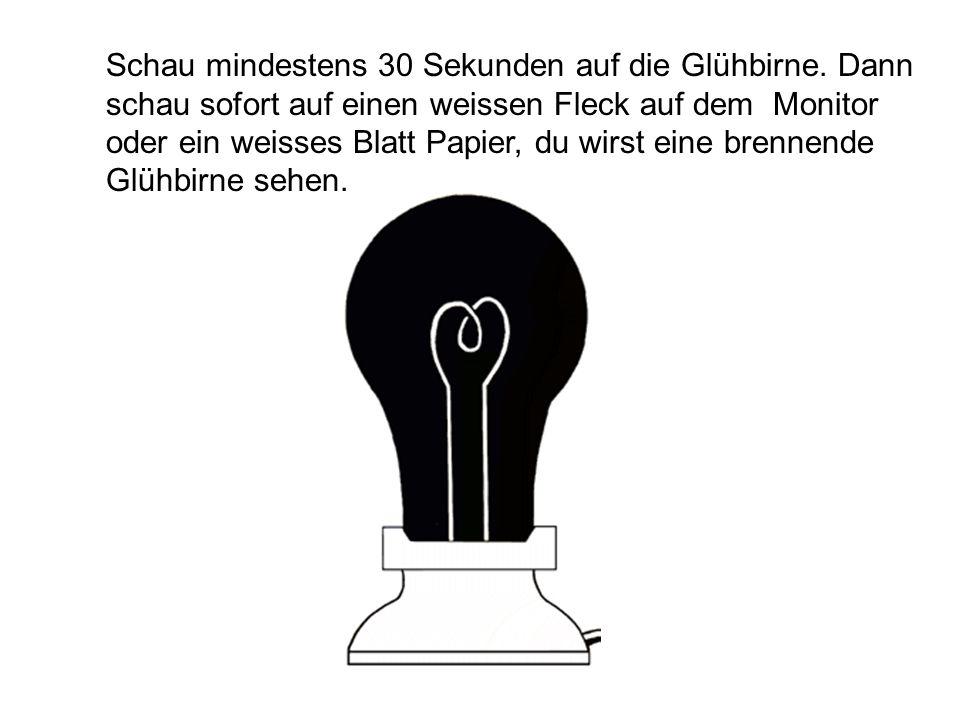 Schau mindestens 30 Sekunden auf die Glühbirne. Dann schau sofort auf einen weissen Fleck auf dem Monitor oder ein weisses Blatt Papier, du wirst eine