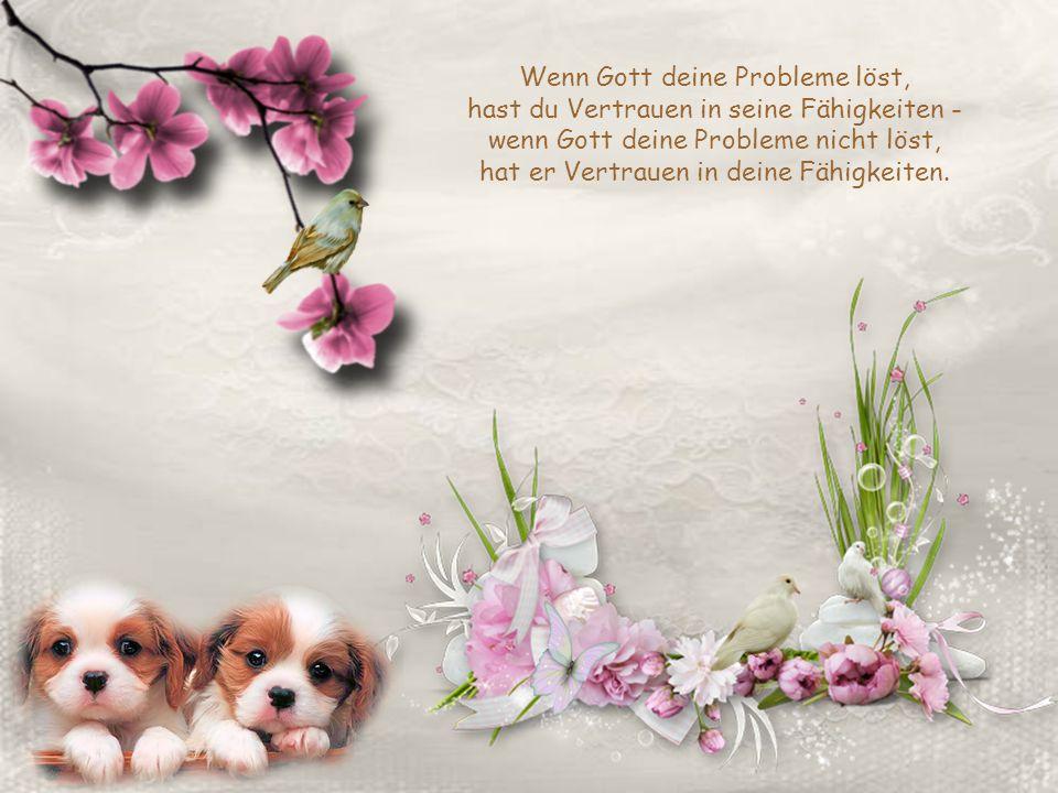 Wenn Gott deine Probleme löst, hast du Vertrauen in seine Fähigkeiten - wenn Gott deine Probleme nicht löst, hat er Vertrauen in deine Fähigkeiten.