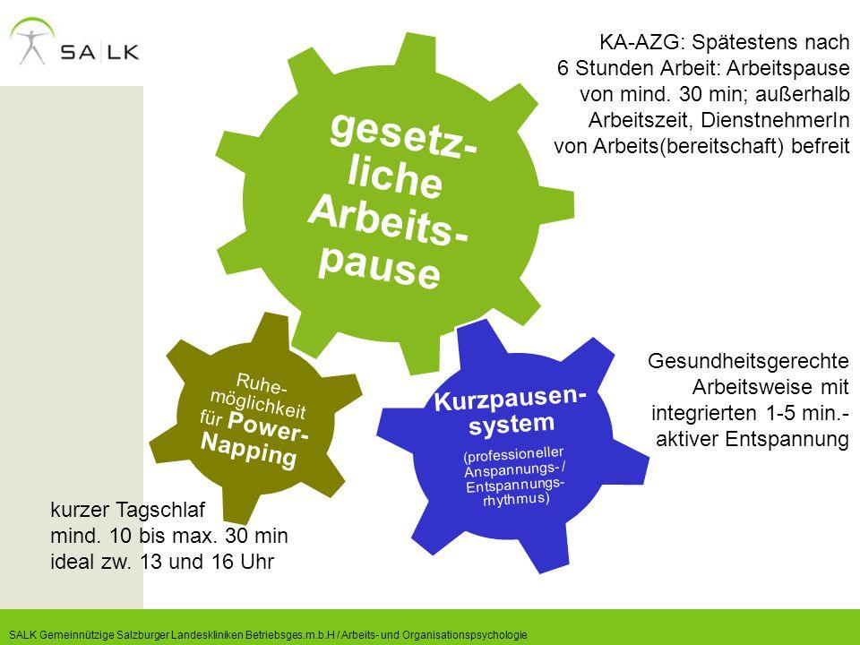 gesetz- liche Arbeits- pause Ruhe- möglichkeit für Power- Napping Kurzpausen- system (professioneller Anspannungs- / Entspannungs- rhythmus) KA-AZG: S