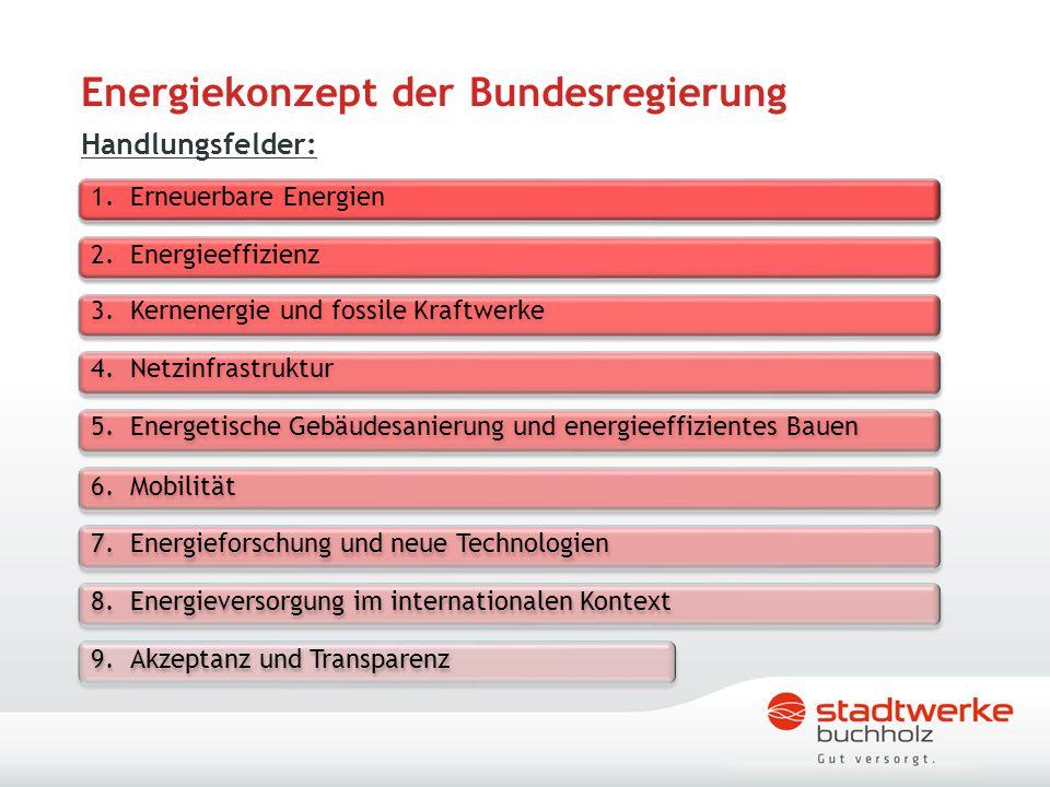 """Maßnahmen Förderprogramm """"Energie für Verbraucher des Landkreises Harburg Förderprogramm """"Stadtklima Buchholz Engagement Stadtwerke Buchholz Diskussion"""