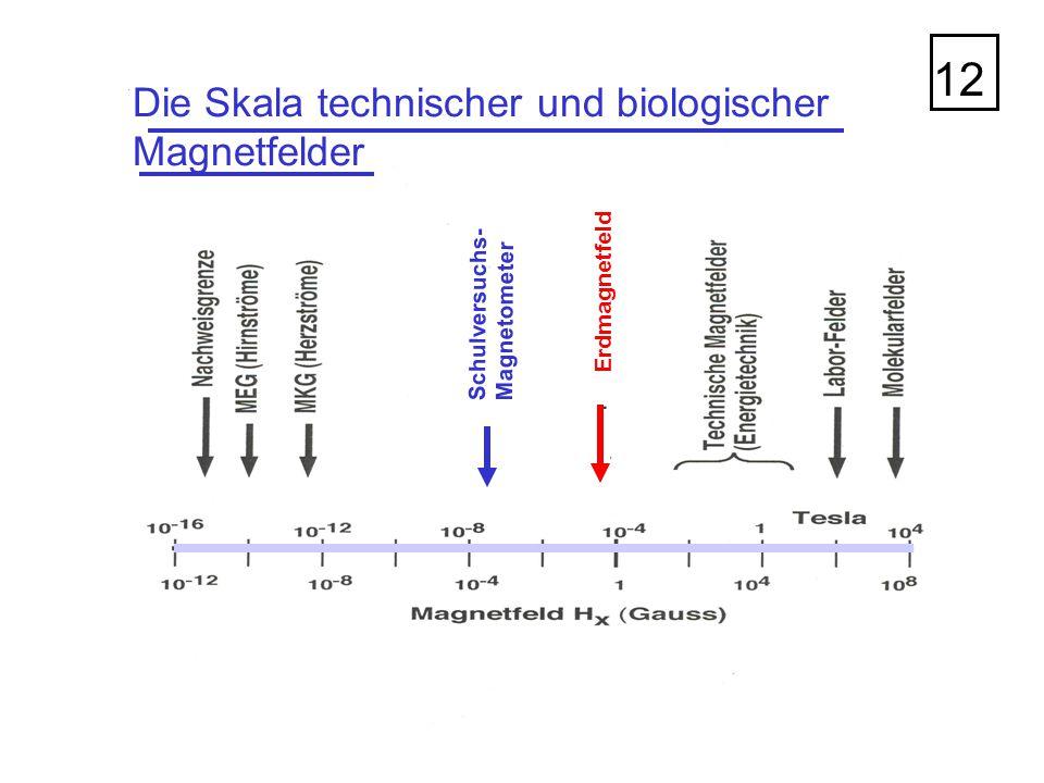 Die Skala technischer und biologischer Magnetfelder 12 Erdmagnetfeld Schulversuchs- Magnetometer