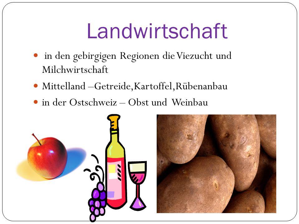 Landwirtschaft in den gebirgigen Regionen die Viezucht und Milchwirtschaft Mittelland –Getreide,Kartoffel,Rübenanbau in der Ostschweiz – Obst und Weinbau