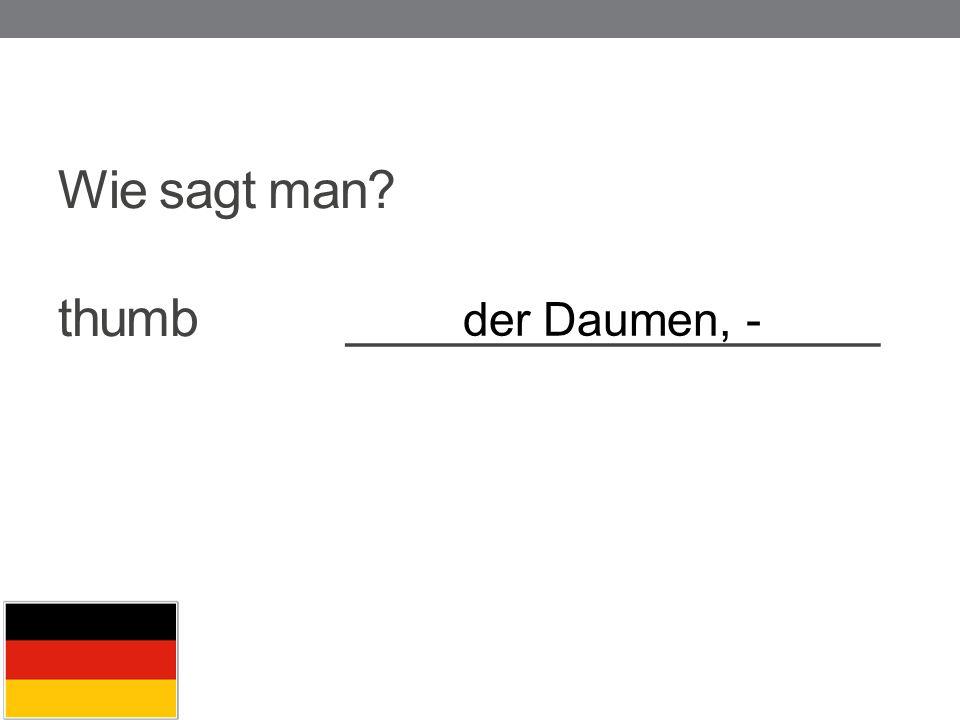 Wie sagt man? thumb ___________________ der Daumen, -