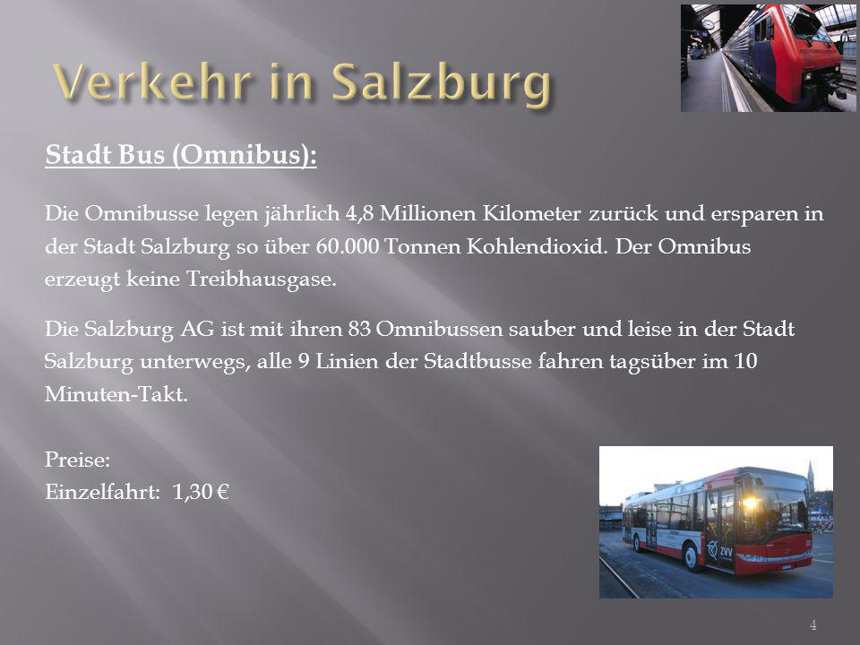 Stadt Bus (Omnibus): Die Omnibusse legen jährlich 4,8 Millionen Kilometer zurück und ersparen in der Stadt Salzburg so über 60.000 Tonnen Kohlendioxid.