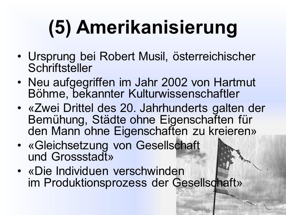 (5) Amerikanisierung Ursprung bei Robert Musil, österreichischer Schriftsteller Neu aufgegriffen im Jahr 2002 von Hartmut Böhme, bekannter Kulturwissenschaftler «Zwei Drittel des 20.