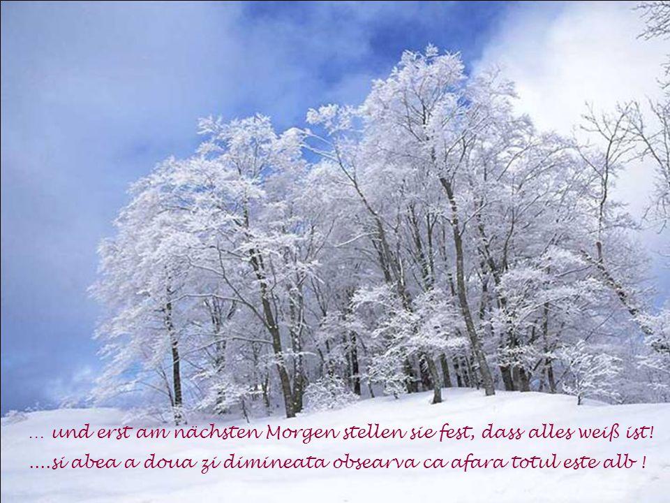 und bei freudlosen Menschen kommt dann das Alter so plötzlich wie ein Schneesturm …...si la acesti oameni vine batrinetea asa deodata, ca o furtuna de zapada....