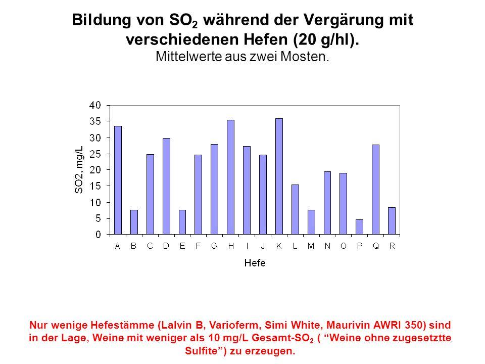 Bildung von SO 2 während der Vergärung mit verschiedenen Hefen (20 g/hl). Mittelwerte aus zwei Mosten. Nur wenige Hefestämme (Lalvin B, Varioferm, Sim
