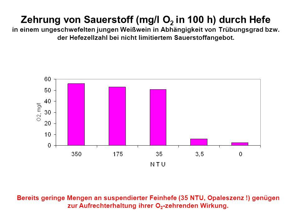 Zehrung von Sauerstoff (mg/l O 2 in 100 h) durch Hefe in einem ungeschwefelten jungen Weißwein in Abhängigkeit von Trübungsgrad bzw. der Hefezellzahl