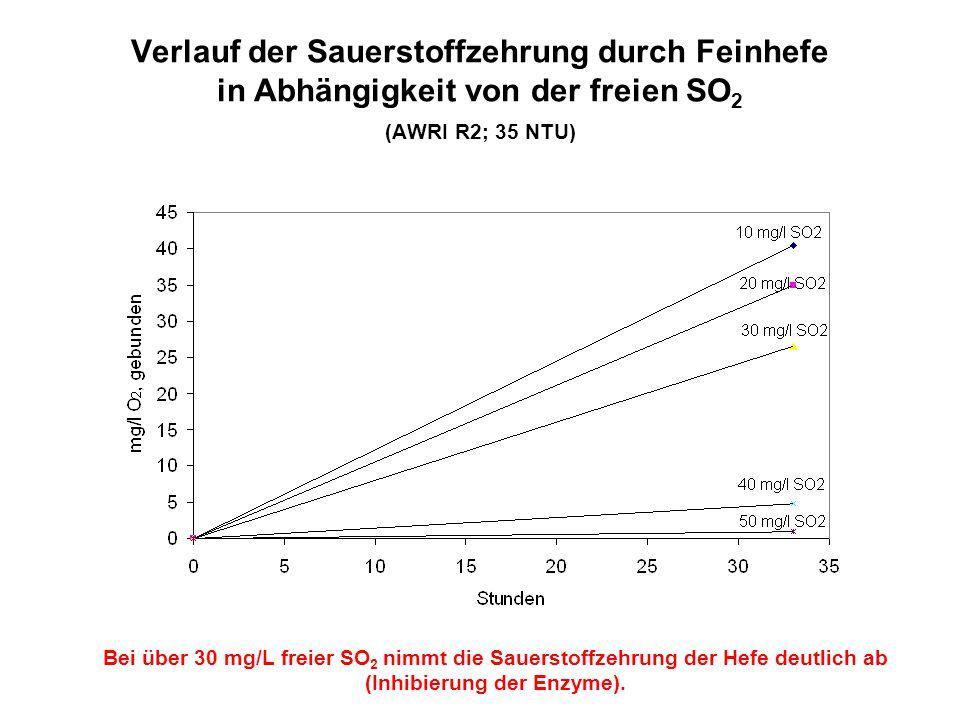 Verlauf der Sauerstoffzehrung durch Feinhefe in Abhängigkeit von der freien SO 2 (AWRI R2; 35 NTU) Bei über 30 mg/L freier SO 2 nimmt die Sauerstoffze