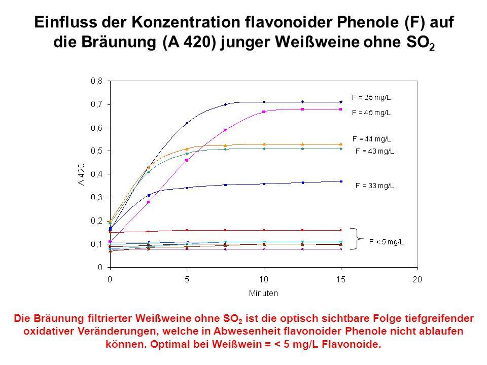 Einfluss der Konzentration flavonoider Phenole (F) auf die Bräunung (A 420) junger Weißweine ohne SO 2 Die Bräunung filtrierter Weißweine ohne SO 2 is