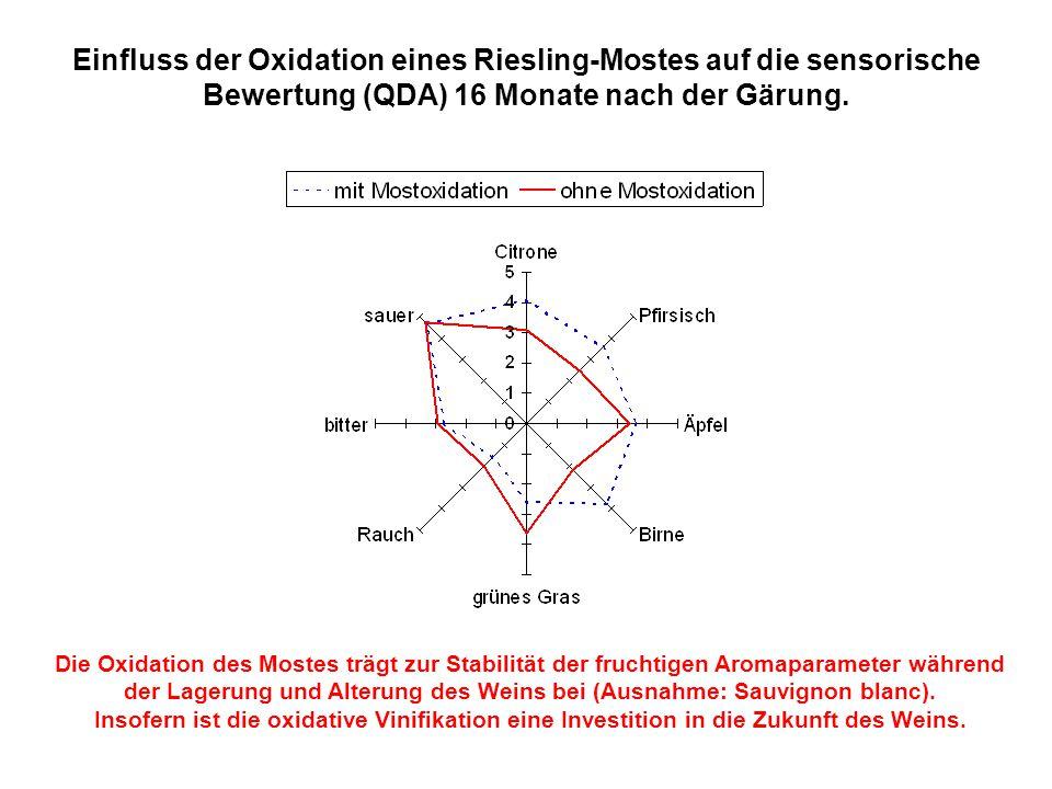 Einfluss der Oxidation eines Riesling-Mostes auf die sensorische Bewertung (QDA) 16 Monate nach der Gärung. Die Oxidation des Mostes trägt zur Stabili