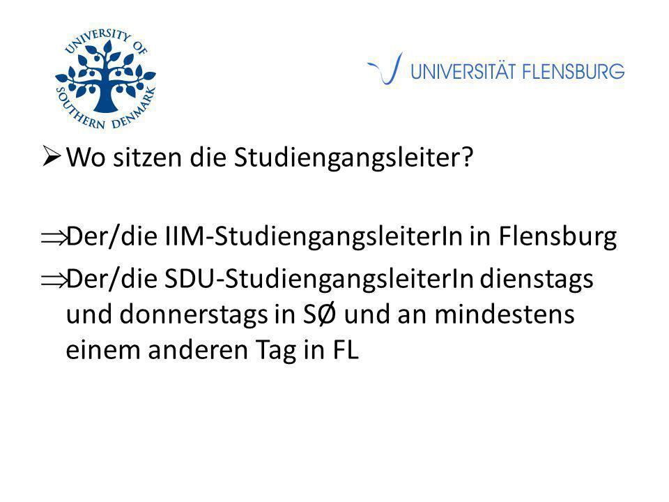  Wo sitzen die Studiengangsleiter?  Der/die IIM-StudiengangsleiterIn in Flensburg  Der/die SDU-StudiengangsleiterIn dienstags und donnerstags in SØ