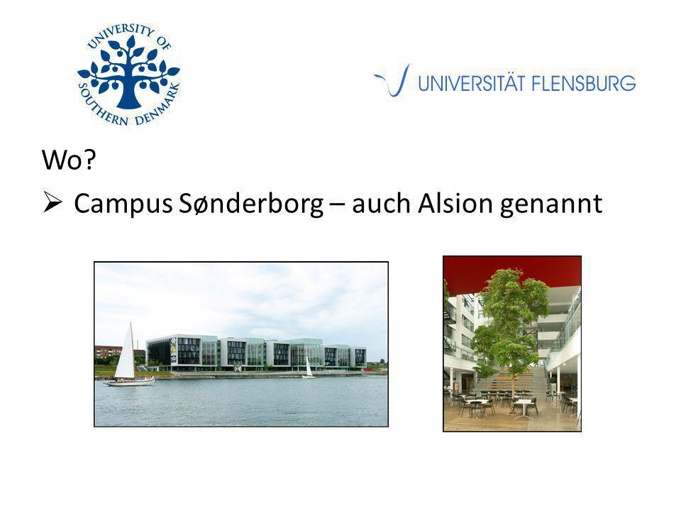 Wo?  Campus Sønderborg – auch Alsion genannt