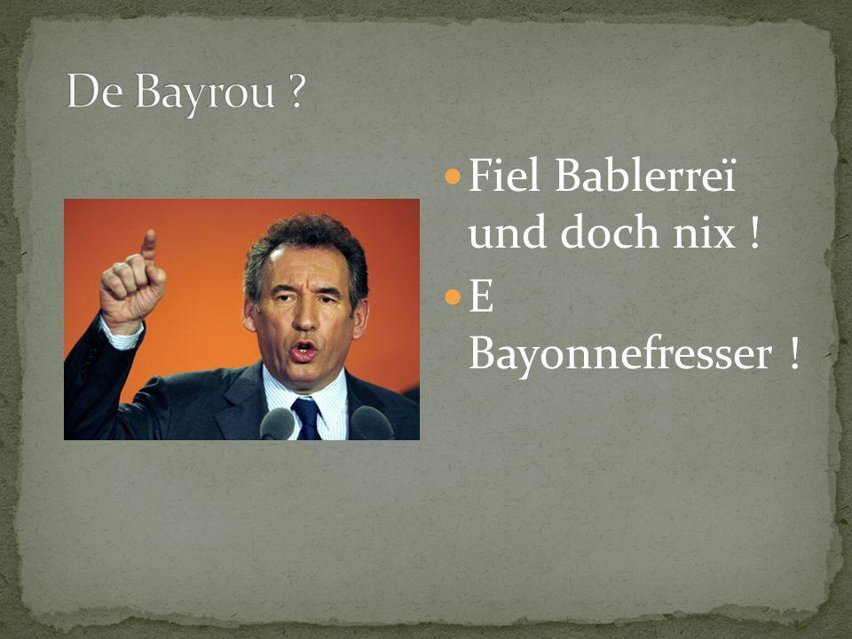 Fiel Bablerreï und doch nix ! E Bayonnefresser !