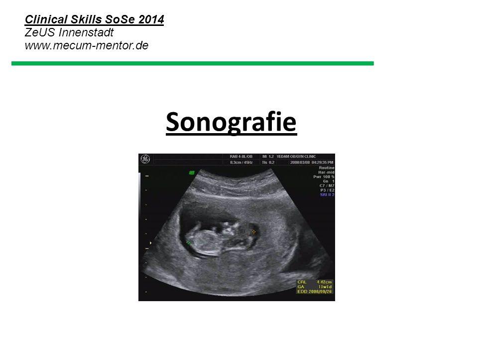 Clinical Skills SoSe 2014 ZeUS Innenstadt www.mecum-mentor.de Sonografie