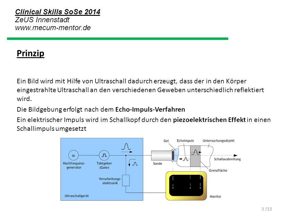 Clinical Skills SoSe 2014 ZeUS Innenstadt www.mecum-mentor.de /13 Prinzip Ein Bild wird mit Hilfe von Ultraschall dadurch erzeugt, dass der in den Kör