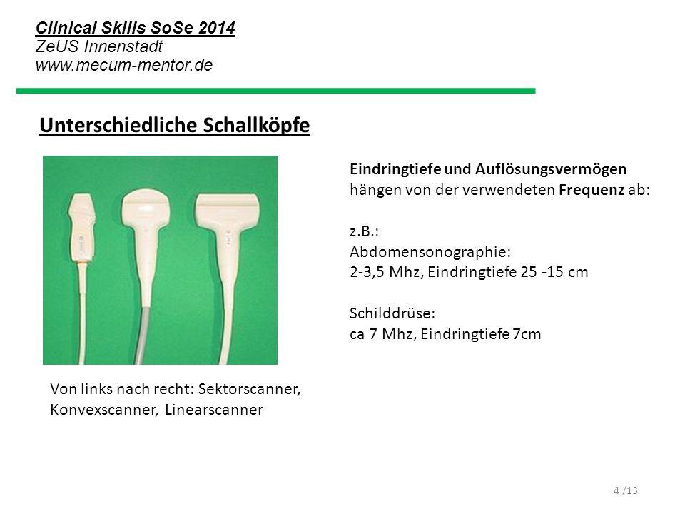 Clinical Skills SoSe 2014 ZeUS Innenstadt www.mecum-mentor.de /13 Unterschiedliche Schallköpfe Von links nach recht: Sektorscanner, Konvexscanner, Lin