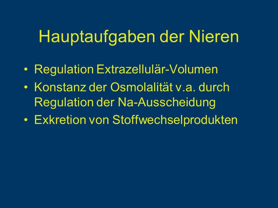 Hauptaufgaben der Nieren Regulation Extrazellulär-Volumen Konstanz der Osmolalität v.a.