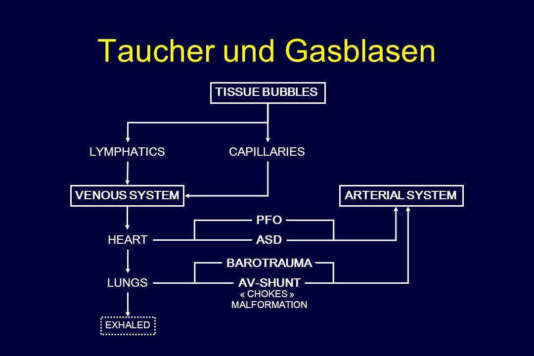 Taucher und Gasblasen TISSUE BUBBLES LYMPHATICSCAPILLARIES VENOUS SYSTEM LUNGS ARTERIAL SYSTEM BAROTRAUMA AV-SHUNT « CHOKES » MALFORMATION HEART PFO A