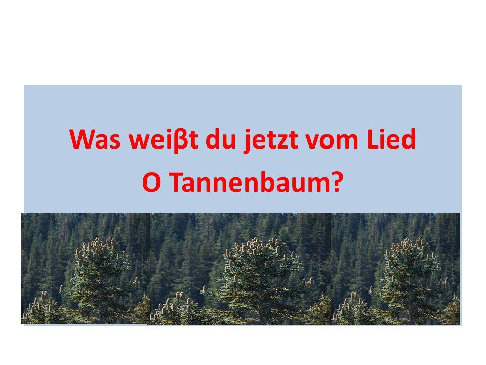 Was weiβt du jetzt vom Lied O Tannenbaum