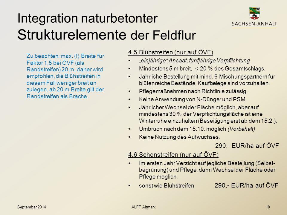 """Integration naturbetonter Strukturelemente der Feldflur 4.5 Blühstreifen (nur auf ÖVF) """"einjährige"""" Ansaat, fünfjährige Verpflichtung Mindestens 5 m b"""