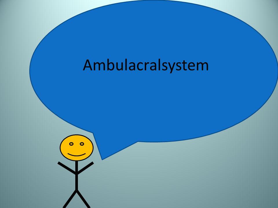 Ambulacralsystem
